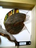 papillon3-art-textile
