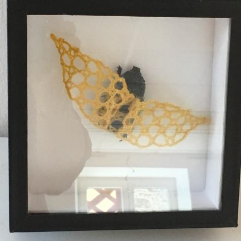 art textile, art contemporain, dentelle contemporaine, fils métalliques, taxidermie