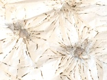 art textile, art contemporain, dentelle contemporaine, fils métalliques, papier brûlé